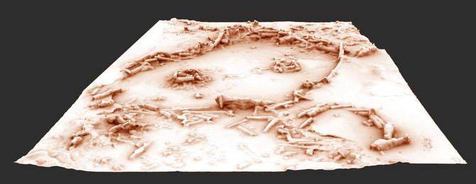 Recomposició en 3D de la composició d'estalagmites. En tots els anells s'han trobat restes de foc sense poder determinar-ne la funció. / Xavier Muth - Get in Situ, Archéotransfert, Archéovision -SHS-3D, base photographique Pascal Mora