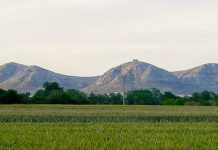 El massís del Montgrí vist des del Baix Ter