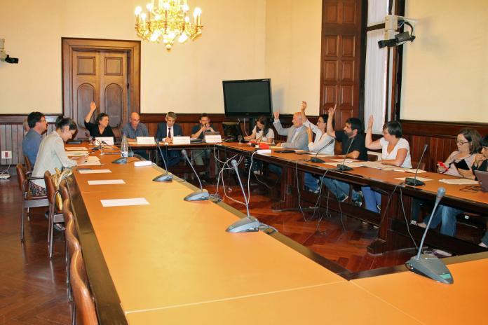 La Comissió d'estudi del procés constituent votant