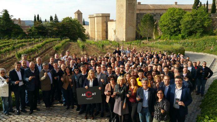 Foto dels electes que han participat de l'acte de presentació de l'AECAT al Camp de Tarragona | AMI
